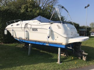 Sea Ray 260 Sundancer Mia Fenix Advert